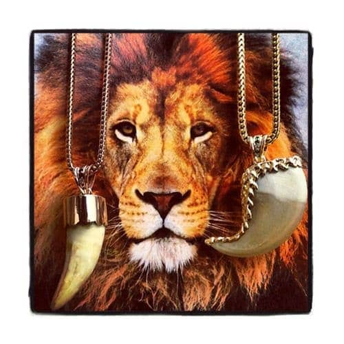 14K Rose Gold Lion Tooth Chain Diamond