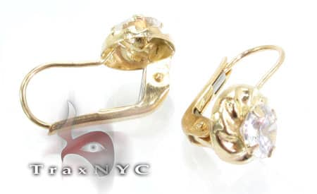 Golden Spiral Earrings Metal