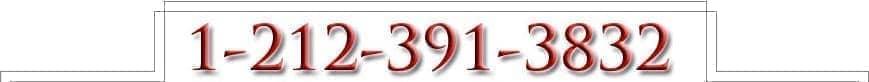 1-212-391-3832