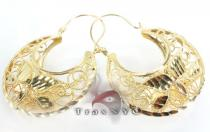 Golden Crescent Earrings Metal